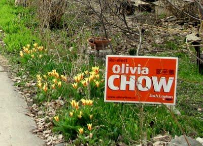 olivia-chow-sign2