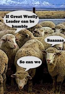 conservative-sheep