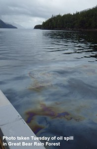 Image: Oil on water in Grenville Ch