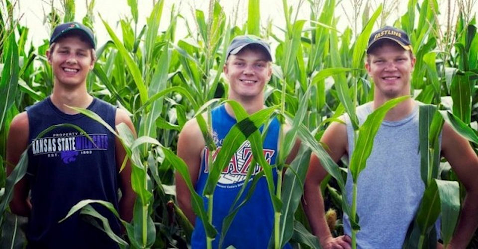 The farming brothers standing in a cornfield