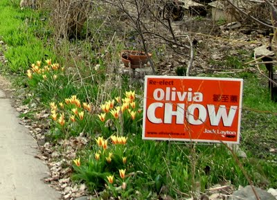 olivia-chow-sign2