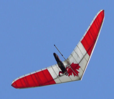 Glider with maple leaf, going down