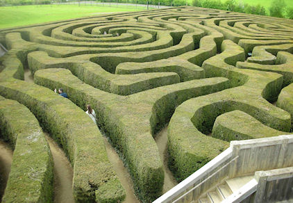 Image: A maze of hedges