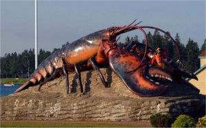 Shediac Lobster