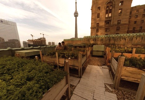 Fairmont Royal York roof garden
