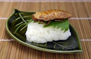 Cockroach_sushi