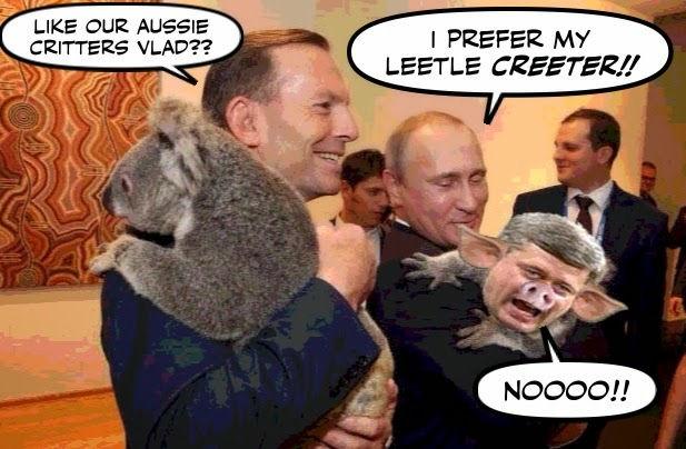 Putin and Koala